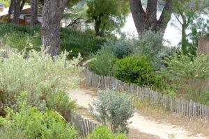 Requalification de l'arrière-plage de Cavalière