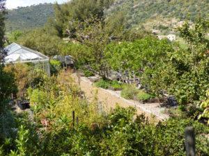 Pépinière botanique mouvements et paysages