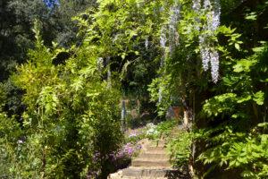 Le Clos aux cigales, Bormes les Mimosas