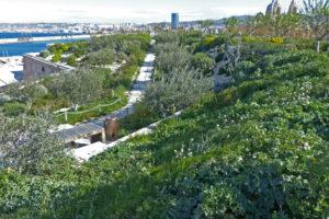 Entretien et médiation du Jardin des Migrations au MUCEM
