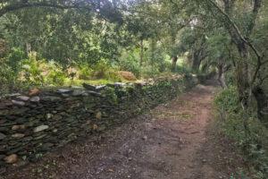 Espaces naturels sensibles, L'île de Port-Cros