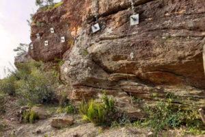 Aménagement paysagé de la paroi rocheuse du Rayol