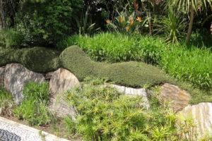 Jardin Sequencia, au Rayol-Cadenel