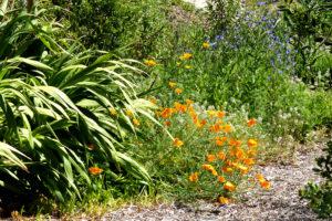 Jardins de la villa Théo au Lavandou