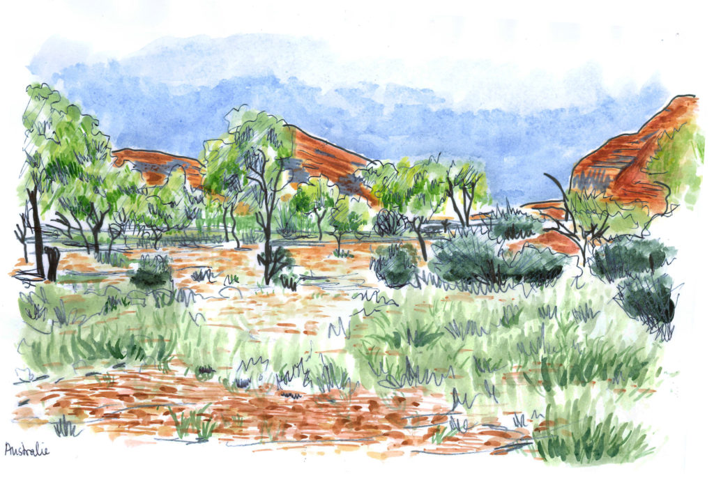 Aquarelle bush australien